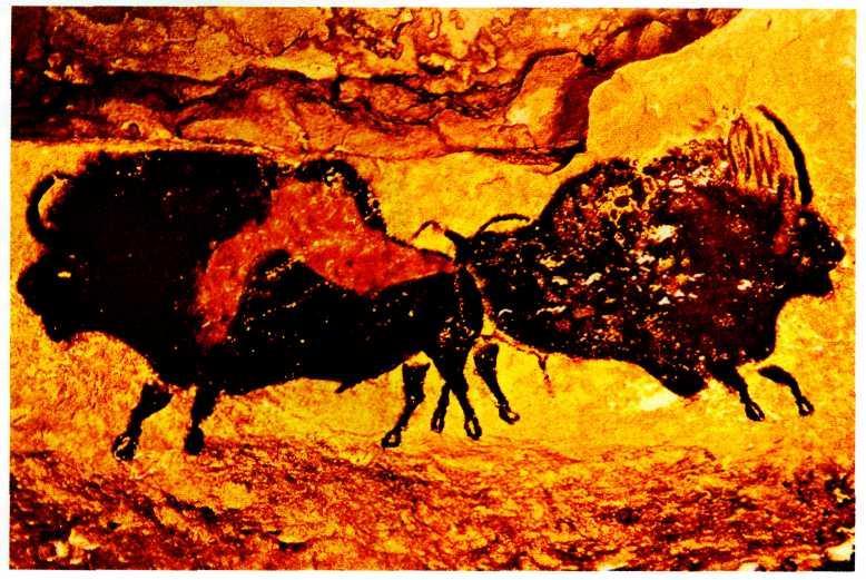 radiokarbonové datování jeskynních maleb